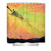 Autumn's Pastel Pallet Shower Curtain