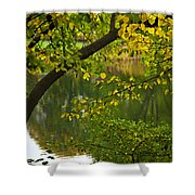 Autumn's Touch Shower Curtain