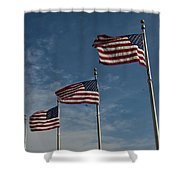 Avenue Of Flags Shower Curtain