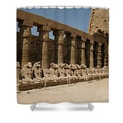 Avenue Of The Sphinx Shower Curtain
