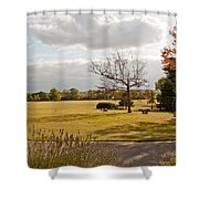 Avery Hill Parkland Shower Curtain