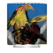 Avian Dreams Series 1-1311 Shower Curtain