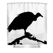 Awaiting Death Shower Curtain