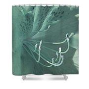 Azalea Hue1 Shower Curtain