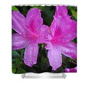 Azalea's In Spring Rain #1 Shower Curtain