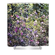 Azaleas In The Forest Shower Curtain