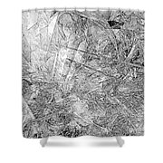 B-w 0501 Shower Curtain