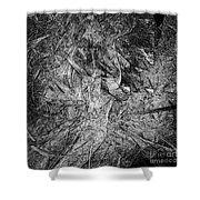 Abstraction 547 - Marucii Shower Curtain
