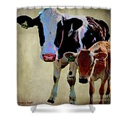 B1308 With B2148 Shower Curtain