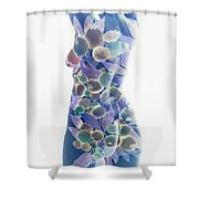 b.1950 J Shower Curtain