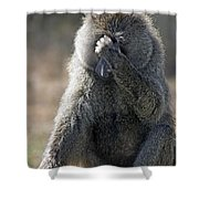 Baboon With Headache Shower Curtain