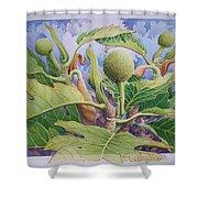 Baby Breadfruit Shower Curtain
