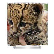 Baby Jaguar Shower Curtain