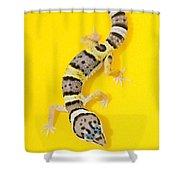 Baby Leopard Gecko Shower Curtain