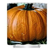 Baby Pumpkin Tears Shower Curtain