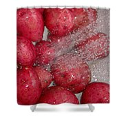 Baby Reds With A Splash Shower Curtain