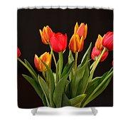 Baby Tulips Shower Curtain