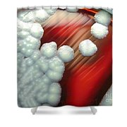 Bacillus Cereus Culture Shower Curtain