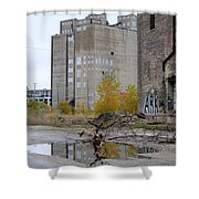 Back Of Warehouse Branches 1 Shower Curtain