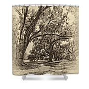 Back To The Future Antique Sepia Shower Curtain