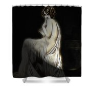 Back To The Twenties Shower Curtain