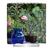 Back Yard Roses Shower Curtain