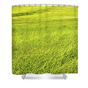 Background Of Green Summer Hay Field In Maine Shower Curtain