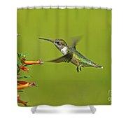 Backyard Buddy Shower Curtain