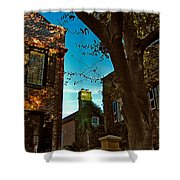 Backyard View Charleston Sc Shower Curtain
