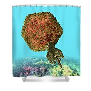 Bacteriophage P22 Shower Curtain by Russell Kightley