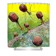 Bacteriophage T4 Virus Group 2 Shower Curtain by Russell Kightley