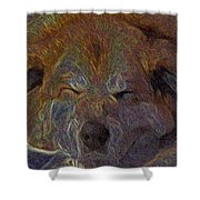 Baily May Shower Curtain