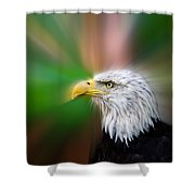 Bald Eagle Color  Shower Curtain