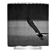 Bald Eagle Take Off Series 5 Of 8 Shower Curtain
