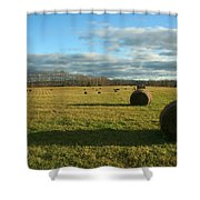 Bales II Shower Curtain