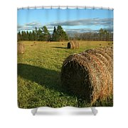 Bales Shower Curtain
