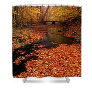 Bamboo Brook Chester New Jersey Shower Curtain