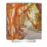 Banyan In The Afternoon Shower Curtain