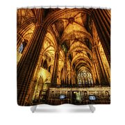 Barcelona Cathedral  Shower Curtain