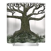 Bare Branches I Shower Curtain