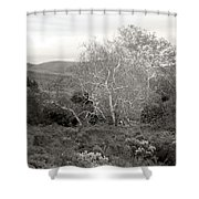Bare Garden In The Hills Shower Curtain