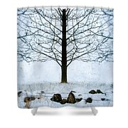 Bare Tree In Winter Shower Curtain