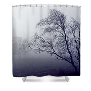 Bare Trees In Thick Fog, Peak District Shower Curtain