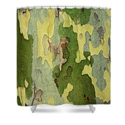 Bark Of A Sycamore Tree Shower Curtain
