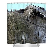 Barn From Below Shower Curtain
