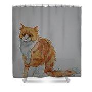 Barn Keeper Shower Curtain