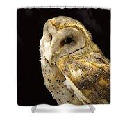 Barn Owl In A Dark Tree Shower Curtain