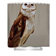 Barn Owl Of Michigan Shower Curtain