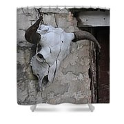 Barn Skull Shower Curtain