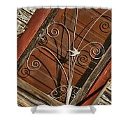 Barn Swallow Gracing Historial Train Station Door Shower Curtain